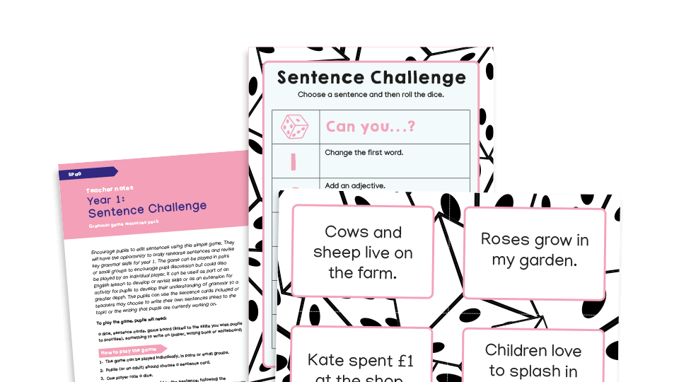Grammar Games: Year 1 Sentence Editing Challenge Dice Game