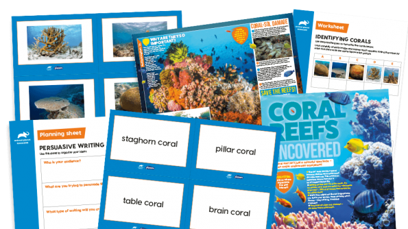 Free Resource Image for Coral Reefs - KS2 Comprehension and Writing Activities Pack