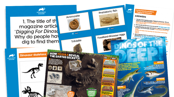 Free Resource Image for Dinosaurs and Fossils – KS2 Comprehension and Writing Activities Pack