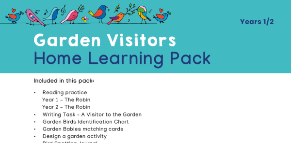 Preview image of KS1 Home Learning Pack: Garden Visitors