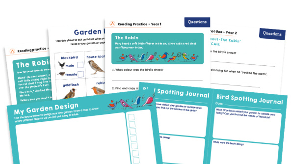 Image of KS1 Home Learning Pack: Garden Visitors