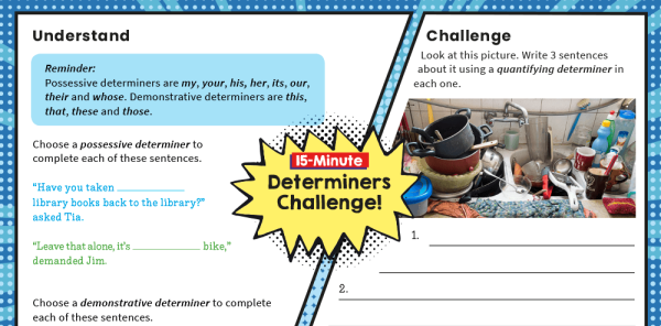 Preview image of Y4 SPaG Challenge Mat: Determiners